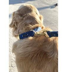 "Collier pour chien ""Yankee""-Accueil"