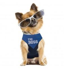 "Box Fashionista ""Le Boss""-Accueil"